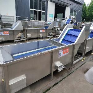 厂家直销果蔬清洗机 喷淋式中药材气泡清洗机 叶菜类清洗流水线