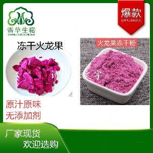红心火龙果冻干粉98%  冻干火龙果粉价格  红心火龙果粉