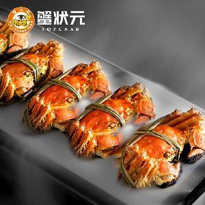 大閘蟹螃蟹提貨券批發零售一件代發高端品牌蘇州官方食品旗艦店