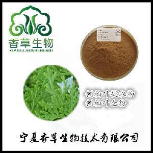 侧柏叶提取物12:1 批发柏树叶提取物  侧柏叶浸膏粉全溶于水